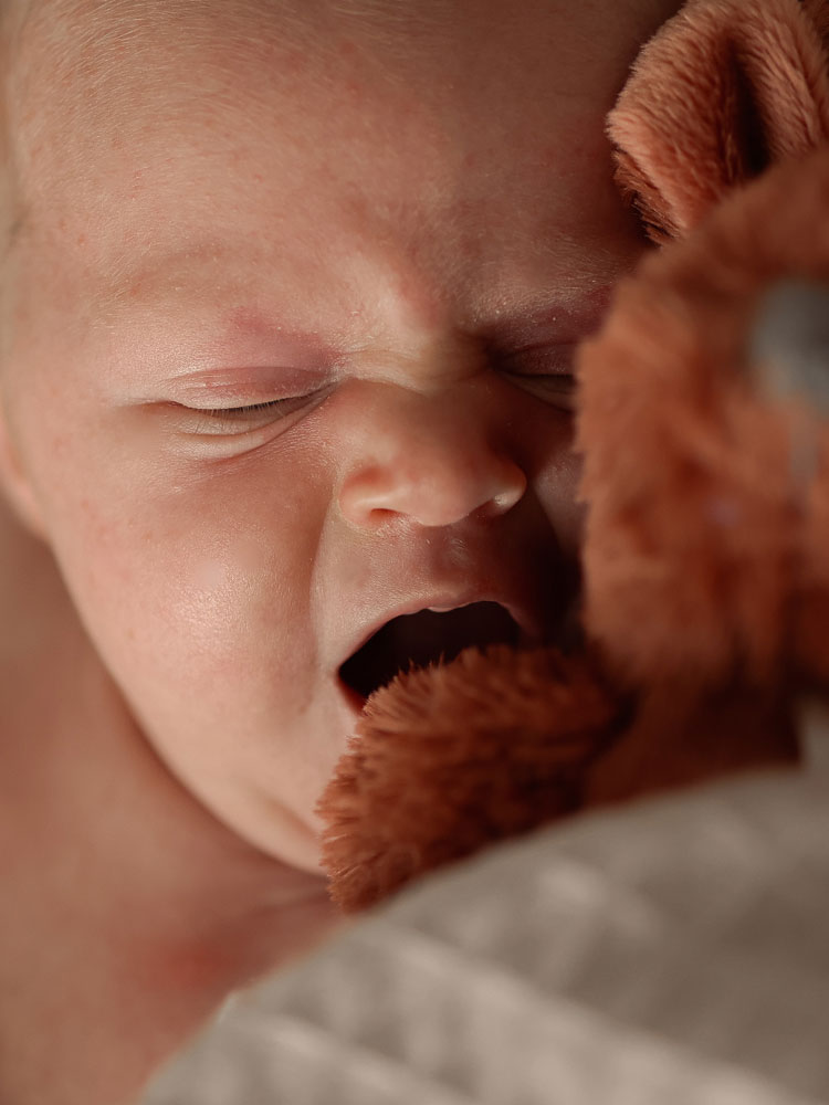 Newborn fotografie Weert